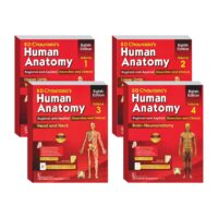 Human Anatomy Set